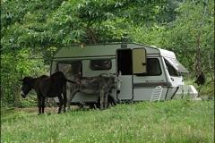 overnachten-in-caravans